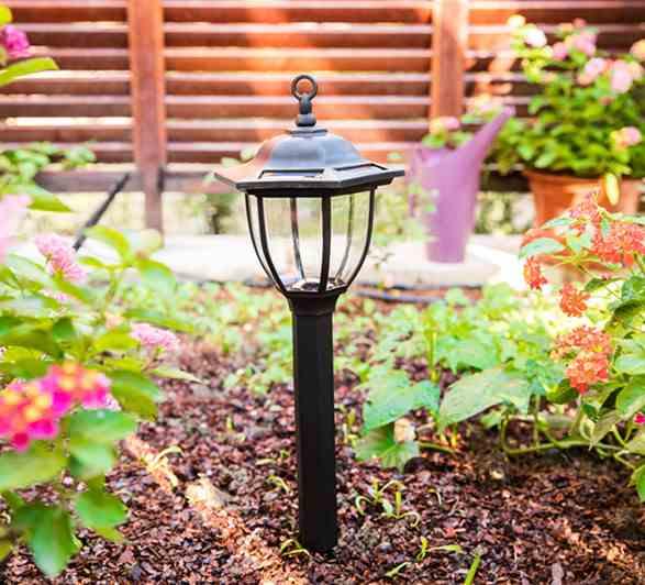 Как да се грижим за слънчевата светлина в градината?